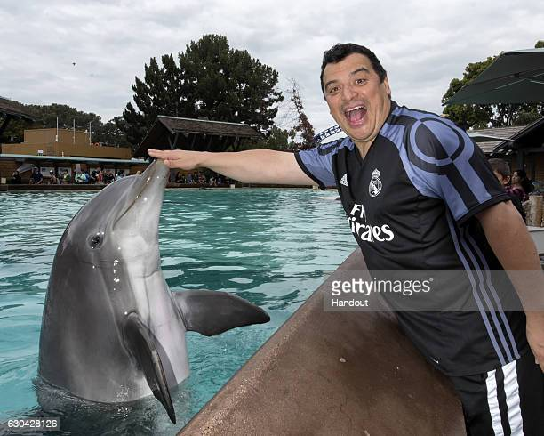 In this handout photo provided by SeaWorld San Diego comedian Carlos Mencia meets Steimie a 26yearold female Atlantic bottlenose dolphin while...