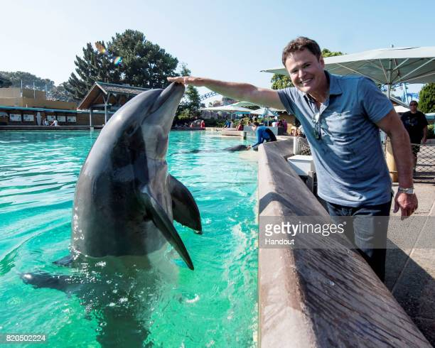 In this handout photo provided by SeaWorld San Diego Singer/actor Donny Osmond meets Crunch a male bottlenose dolphin while visiting the Dolphin...
