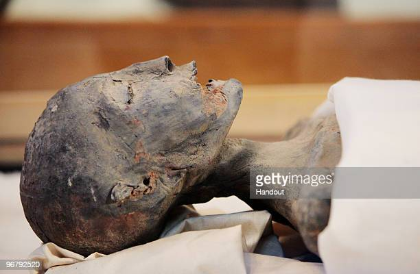 In this handout photo provided by the Discovery Channel Mummies King Tutankhamun's mother on display during a press conference by the head of the...