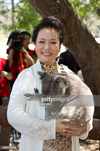 In this handout photo provided by the G20 Australia Madame Peng Liyuan of China cuddles a koala at the Lone Pine Koala Sanctuary as part of the G20...