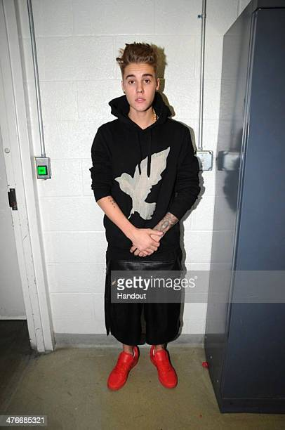 In this handout photo provided by the Miami Beach Police Department and released on March 4 singer Justin Bieber is photographed by police while in...