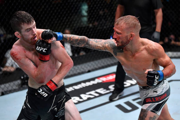 In this handout photo provided by the UFC, T.J. Dillashaw punches Corey Sandhagen in their bantamweight fight during the UFC Fight Night event at UFC...