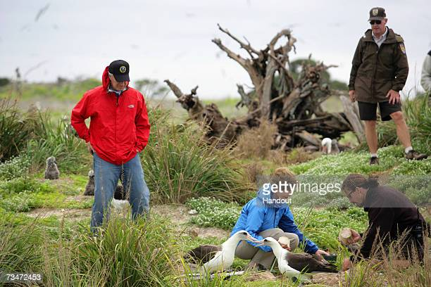 In this handout photo provided by the White House First Lady Laura Bush visits Midway Atoll part of the Hawaiian archipelago on March 1 2007 The...
