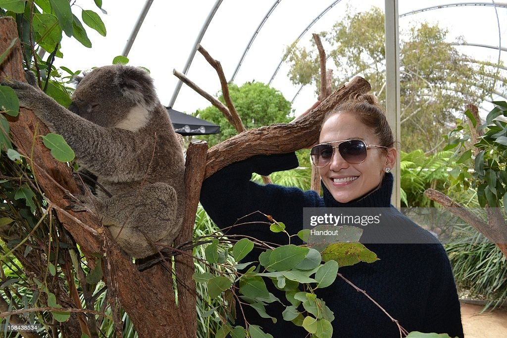 In this handout photo provided by WILD LIFE Sydney Zoo, Singer/Actress Jennifer Lopez poses with an Australian koala during her visit to WILD LIFE Sydney Zoo, on December 15, 2012 in Sydney, Australia.