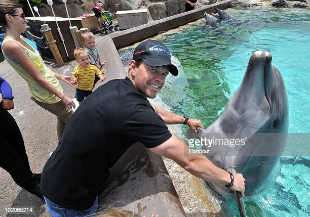In this handout photos provided by SeaWorld San Diego actor Mark Wahlberg shares an early Father's Day moment with his wife Rhea and his sons Brendan...
