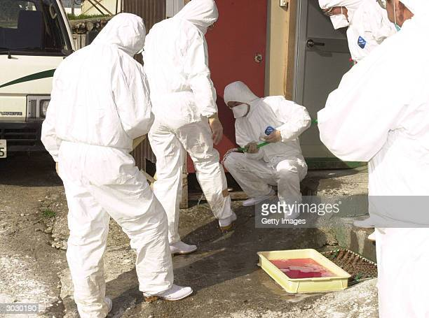 In this handout picture from Kyoto Prefectural government employees inspect the Asada Nosan poultry farm where virulent H5N1 strain of bird flu virus...
