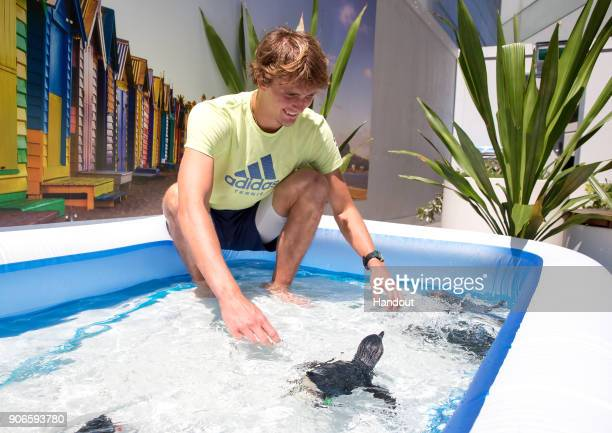 In this handout provided by Tennis Australia Alexander Zverev of Germany meets penguins during day three of the 2018 Australian Open at Melbourne...