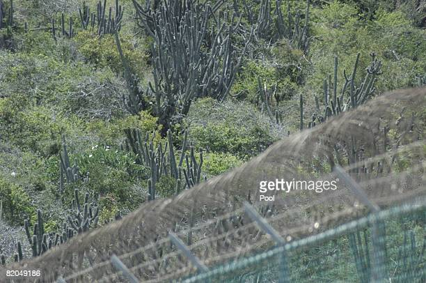 In this image reviewed by the US Military cactus grows otside the boundary fencing which surrounds the detention camp on July 23 2008 at Guantanamo...