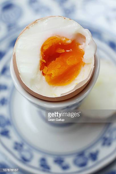 In this photo illustration a boiled egg sits in an egg cup on January 5 2011 in Berlin Germany German authorities across the country are on high...