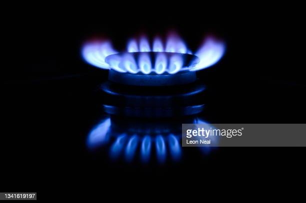 In this photo illustration, A gas flame is seen on a domestic cooker on September 20, 2021 in London, England. Rising prices of natural gas in the UK...