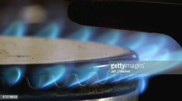 In this photo illustration a gas ring burns on a domestic stove powered by natural gason March 14 2006 in Glasgow Scotland The National Grid issued...