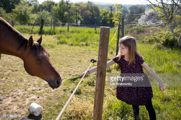 In this photo illustration a girl offers grass to a horse on April 25 2020 in Bonn Germany