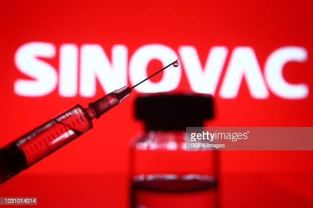 In this photo illustration a Sinovac Biotech Chinese biopharmaceutical company logo is seen in front of a vial and a medical syringe. China has...