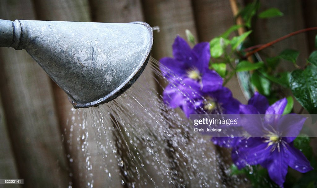 In this photo illustration a watering can pours water on to some flowers on August 11, 2008 in London, England. Thames Water bills are expected to have an annual rise of 3 percent more than inflation as water companies submit predicted finance plans for 2010 to 2015.
