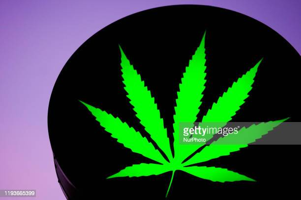 In this photo illustration, Cannabis Shop logo is seen near the store selling legal hemp products in Krakow, Poland on January 12, 2020.