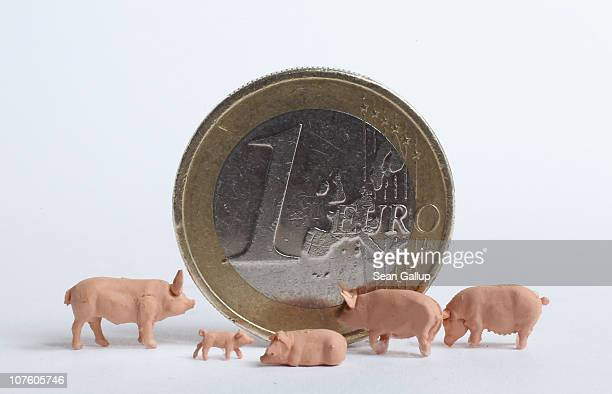 In this photo illustration plastic toy pigs stand around a one Euro coin on December 15 2010 in Berlin Germany European leaders are scheduled to meet...
