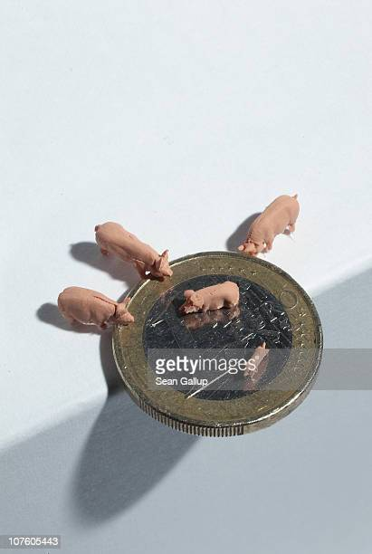 In this photo illustration plastic toy pigs stand around and on a one Euro coin at the edge of a counter top on December 15 2010 in Berlin Germany...