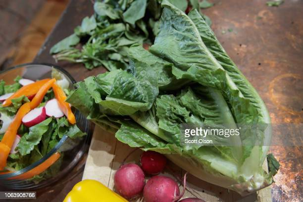 In this photo illustration romaine lettuce is seen on November 20 2018 in Chicago Illinois Health officials in the US and Canada have warned people...