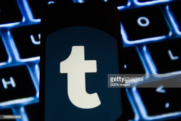 In this photo illustration the Tumblr logo is seen displayed on an Android mobile phone
