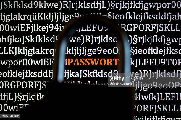 In this photo illustration to the topic 'data security' a closed padlock is captured in front of the word 'Passwort' on a screen on August 08 2016 in...
