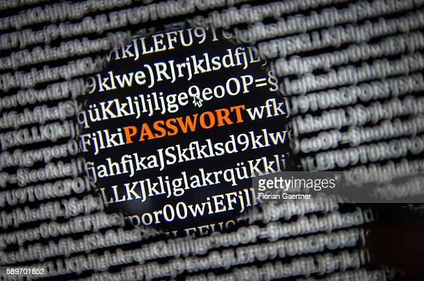 In this photo illustration to the topic 'data security' the word 'Passwort' is captured through a lens on August 08 2016 in Melaune Germany
