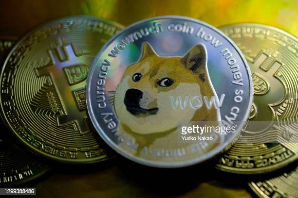 In this photo illustration, visual representations of digital cryptocurrencies, Dogecoin and Bitcoin are arranged on January 29, 2021 in Katwijk,...