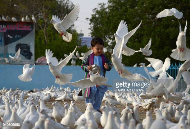 In this photo taken on April 5 2018 an Afghan child gestures as pigeons flying in the courtyard of HazrateAli shrine or Blue Mosque in MazariSharif /...