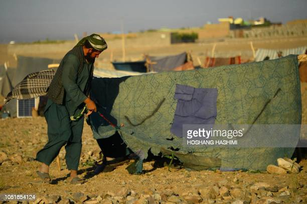 In this photo taken on August 5 a droughtdisplaced Afghan man erects a tent at a camp for internally displaced people in Injil district of Herat...