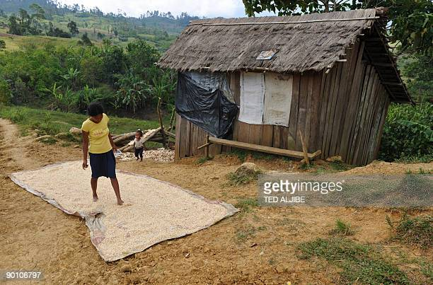 In this photo taken on August 9 2009 a woman dries corn near her house in a village in Surala town province of south Cotabato Data showed the economy...