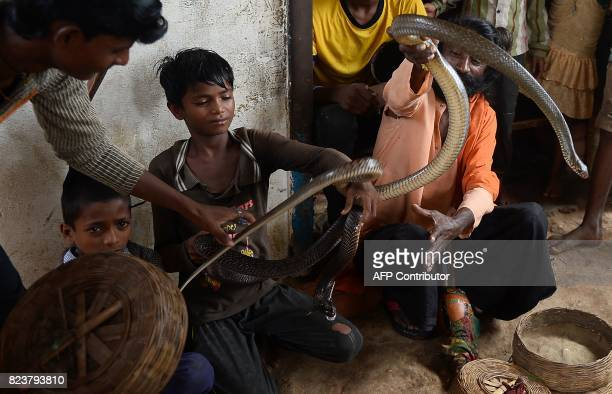 In this photo taken on July 25 the children of Indian snake charmers hold a cobra snake in Kapari village around 40km southwest of Allahabad in Uttar...