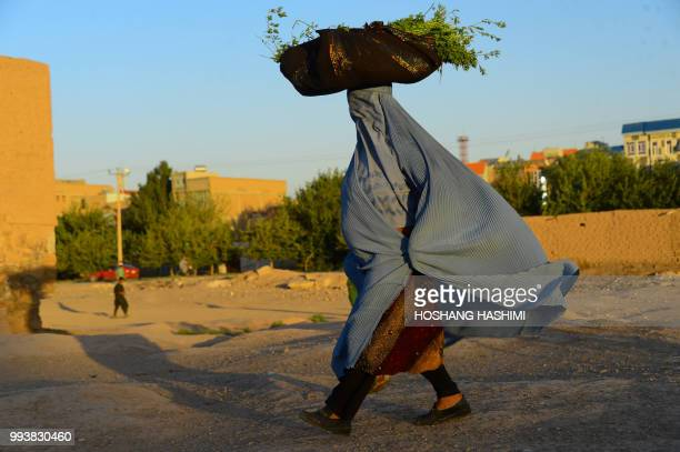 In this photo taken on July 7 an Afghan woman wearing a burqa walks as she carries farming produce on her head on the outskirts of Herat