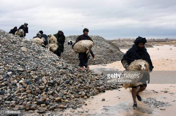 TOPSHOT In this photo taken on March 2 Afghan villagers carry sheep along a flood affected area in Arghandab district of Kandahar province At least...