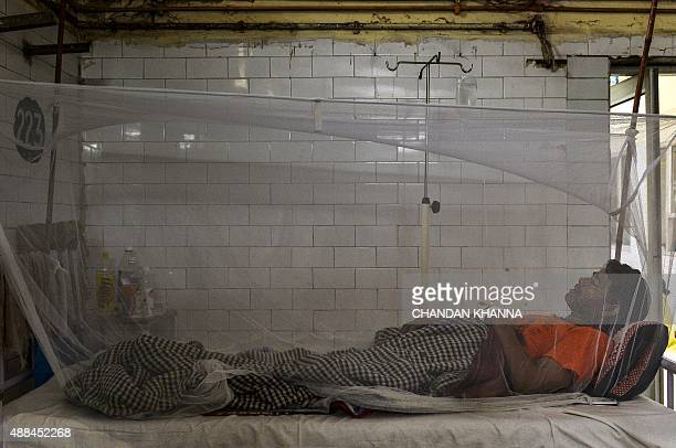 In this photo taken on September 15 2015 Indian patient Banarasi Das lies in a bed covered with a mosquito net in a dengue ward of a government...