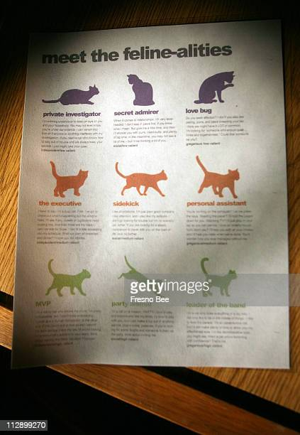 In this photograph, a chart reflects the nine cat personality types at the Fresno-based SPCA shelter. The types are color-coded and the cats in the...