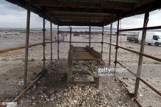 In this photograph taken on April 26 discarded oysters are pictured on an oyster farm at Ture in Co Donegal on Lough Foyle, on the border with...
