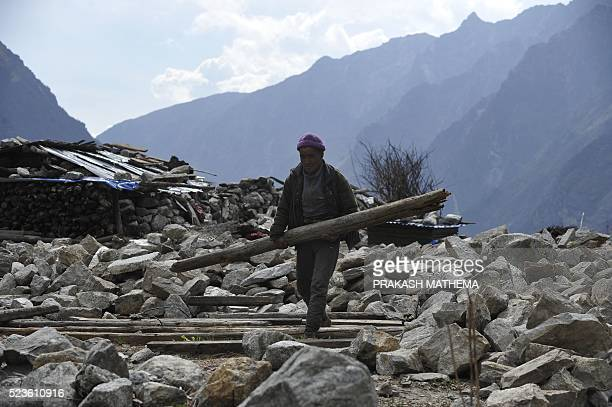 In this photograph taken on April 7 Nepalese yak herder Nurpu Tamang carries wood as he talks during an interview with AFP in Langtang valley in...