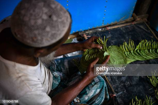 In this photograph taken on August 13 a Rohingya refugee sorts leaves to sell for chewing paan in the Kutupalong camp in Cox's Bazar The Bangladeshi...
