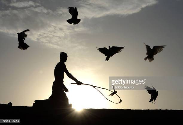 TOPSHOT In this photograph taken on August 16 an Afghan man uses a stick to corral his flock of domesticated pigeons atop the roof of his house on...