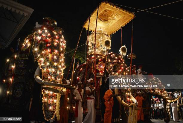 """In this photograph taken on August 25 elephants decorated for the """"Esala Perahera"""" festival are lead past Sri Lankan Buddhist the temple of the Tooth..."""
