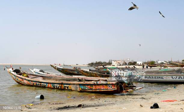 In this photograph taken on August 8 fishing boats stand in the waters of Ndiebene-Gandiol near the northern Senegal city of Saint-Louis. - In 2006,...
