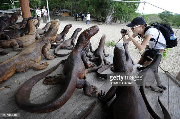In this photograph taken on December 2 a visitor photographs nearly lifesize Komodo dragon wood carvings for sale at Komodo island the natural...