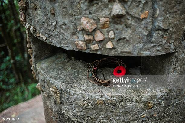 In this photograph taken on December 3 a remembrance poppy is seen on the observation turret of pillbox JLO1 at Jardine's Lookout which was manned by...