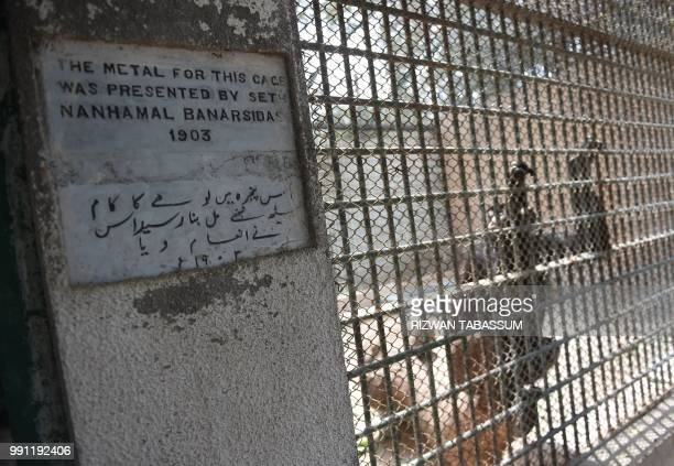 In this photograph taken on February 28 a chimpanzee is pictured in a centuryold cage at the Karachi Zoo in Karachi There are not enough vets at the...