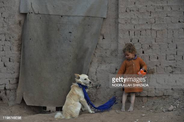 In this photograph taken on February 3 a child stands next to a dog outside his temporary house on the outskirts of Jalalabad.