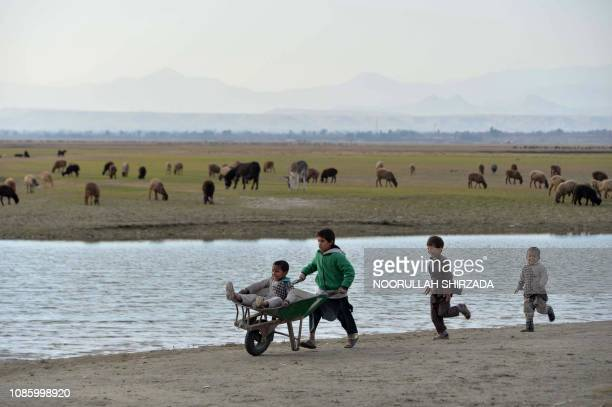 In this photograph taken on January 21 an Afghan boy pushes a wheelbarrow carrying a child as they play on the outskirts of Jalalabad.