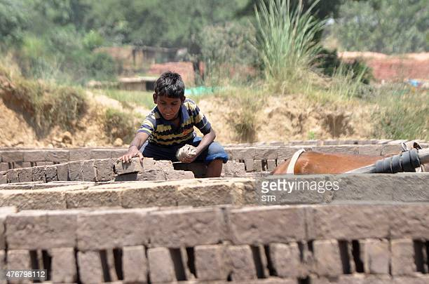 In this photograph taken on June 11 thirteen year old Indian boy Sonu helps his father load bricks onto a horse cart at a brick kiln on the outskirts...