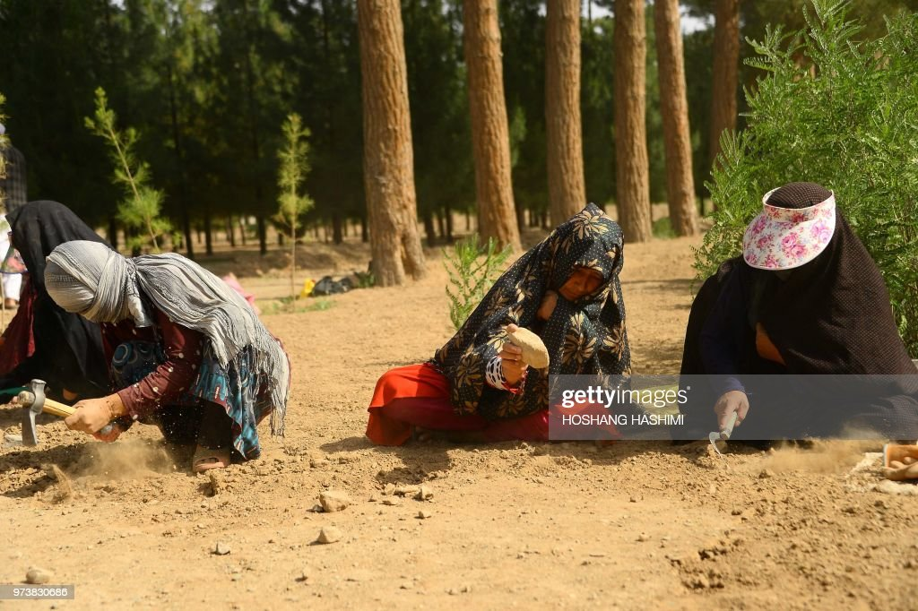 AFGHANISTAN-WOMEN-EMPLOYMENT-GARDENS-SOCIAL : News Photo