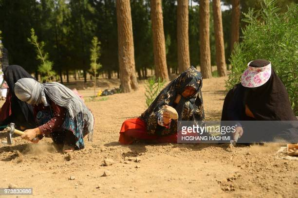 In this photograph taken on June 2 Afghan women work the soil at a park in the city of Herat According to the World Bank 19 percent of Afghan women...