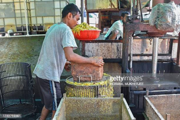 In this photograph taken on March 13 a worker puts a stone over a metal cage containing crushed ripe cashew apples for extracting the juice at the...