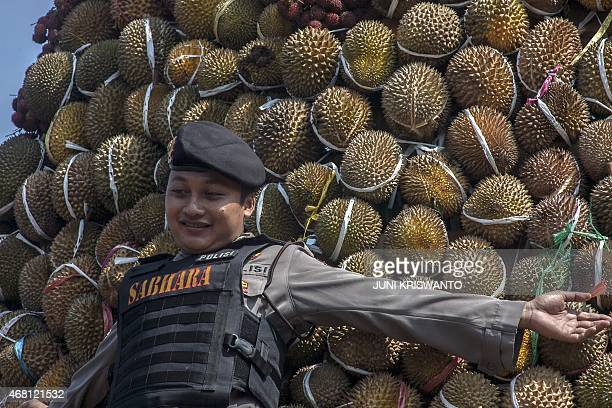 In this photograph taken on March 29 an Indonesian police officer protects a towering stack of durian fruits during the durian festival in Wonosalam...
